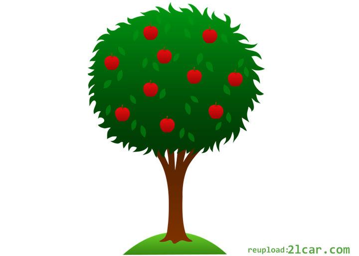 100 Gambar Pohon Duit Lucu Terbaik