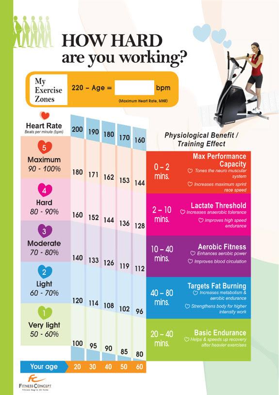body fat percentage healthy zone