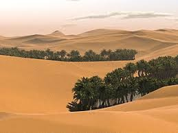 five 5 general characteristics of tropical desert climate