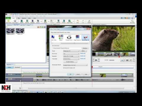 Hot Special Offer: VideoPad Video Editing Software | Saving