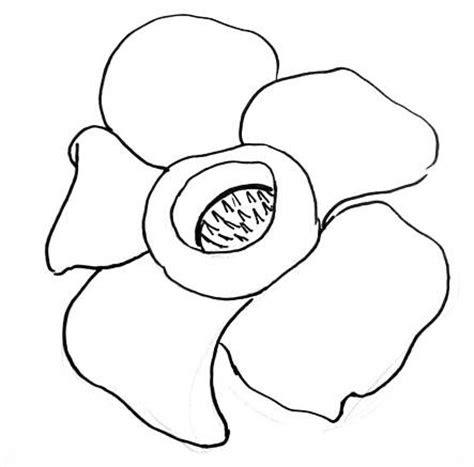 Rafflesia Flower Clip Art - Royalty Free - GoGraph