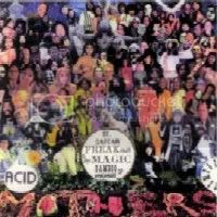 Aquí ya me quedo sin palabras. Un grupo japonés llamado Acid Mothers Temple parodian la parodia sin olvidarse de parodiar también al grupo original y de paso a LOS Stones y a Captain Beefheart. El disco se llama SGT. CAPTAIN FREAK OUT AND THE MAGIC BAMBOO REQUEST.