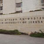 דירוג אוניברסיטאות עולמי: העברית המובילה בארץ, ת