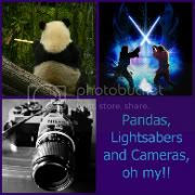 Pandas Lightsabers and Cameras oh my