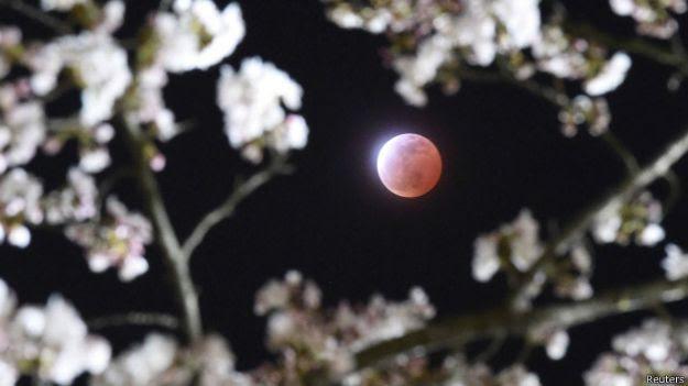 luna sangre, eclipse