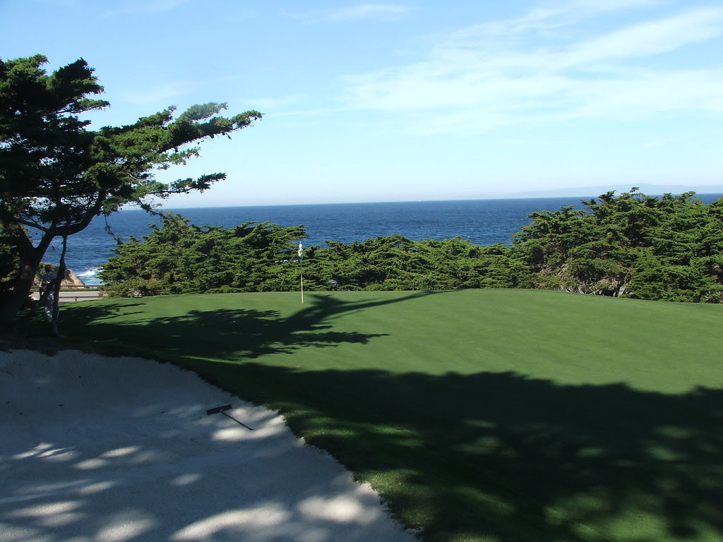 Cypress 14th green