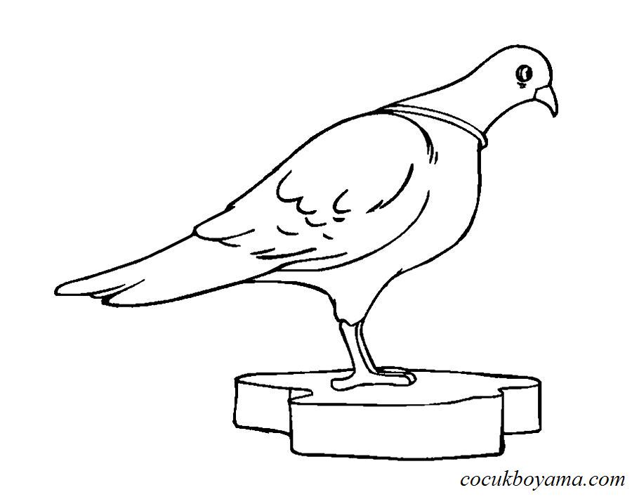 Güvercin 34 ücretsiz Boyama Resimleri