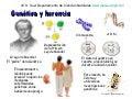 Genetica: introducción