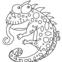 Dibujos Para Colorear Animales Es Hellokids Com