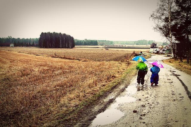 "5.5 ""Umbrellas and Rainy Days"""