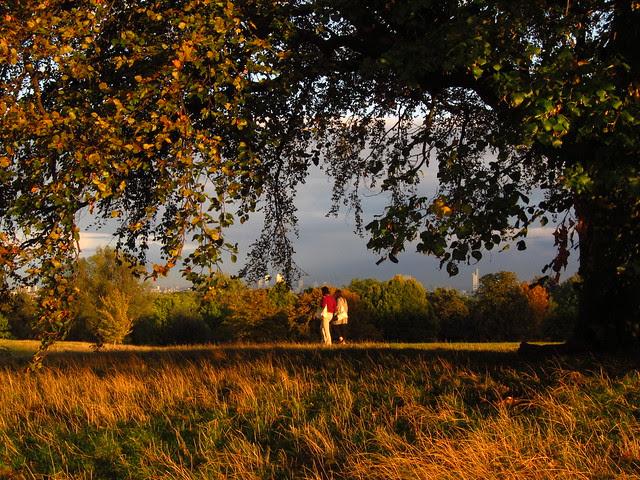 Hampstead Heath Sunset
