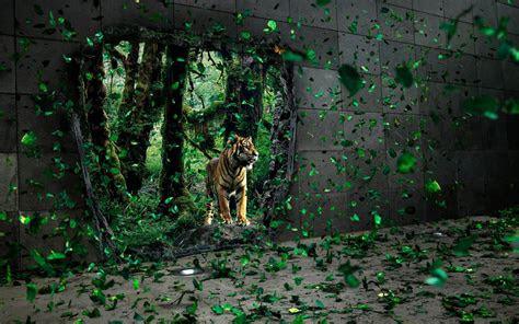 wallpapers tiger desktop wallpapers  backgrounds
