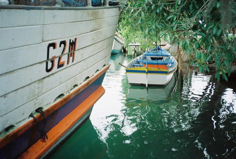 Fishing boats in Barra da Lagoa