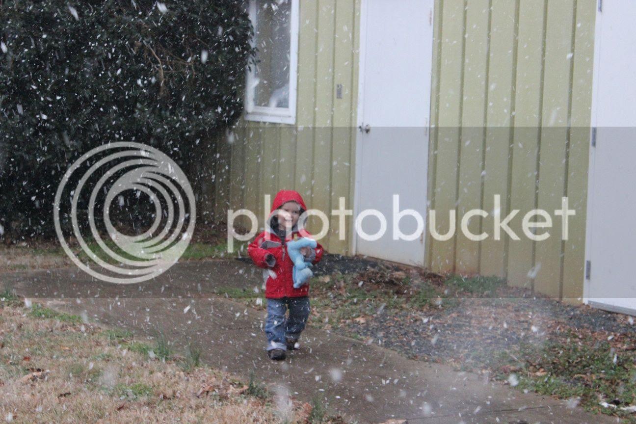 photo snow1_zpsd5059251.jpg
