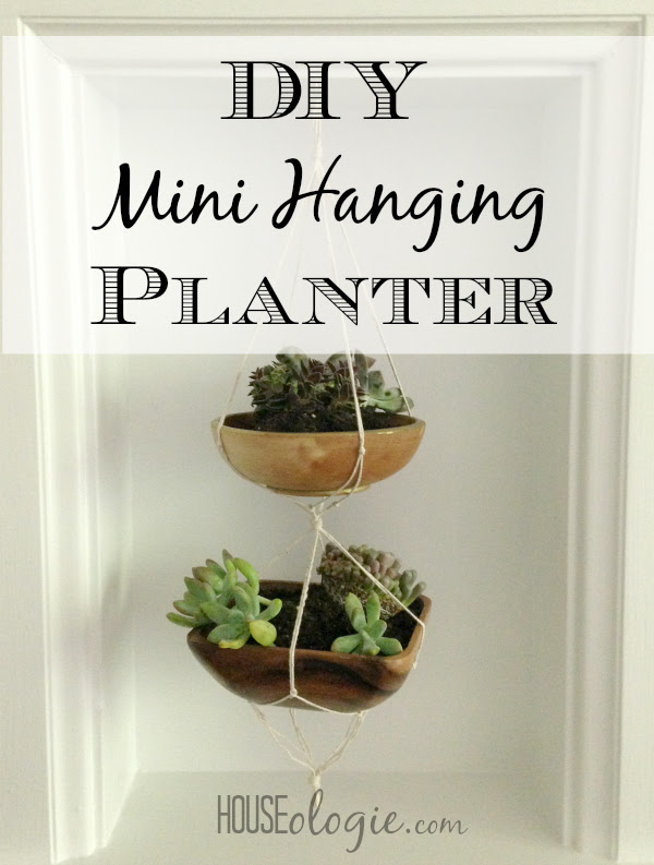 DIY Mini Hanging Planter Graphic