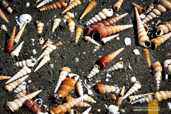 Dark Sand and Shells at Roxas City's Baybay Beach