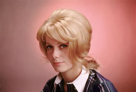 catherine deneuve hd wallpapers  desktop