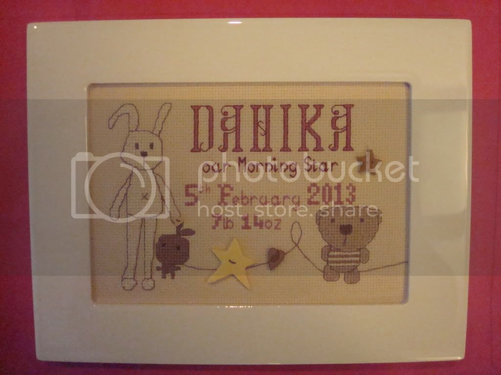 Danika Birth Sampler