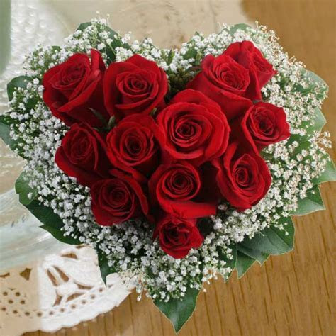Beautiful 12 Red Roses 2016