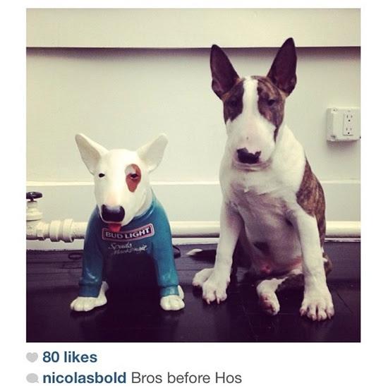Marc Jacobs Dog Neville