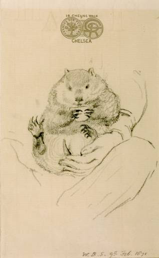 File:Rossetti's Wombat Seated in his Master's Lap (William Bell Scott).jpg