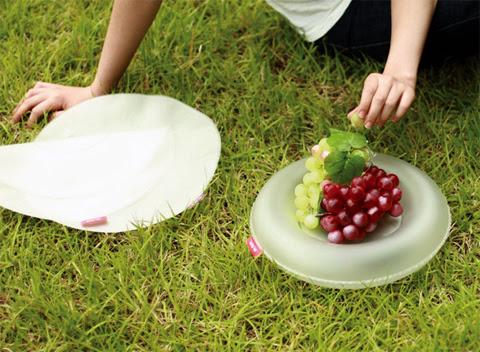 air-dish-1.jpg