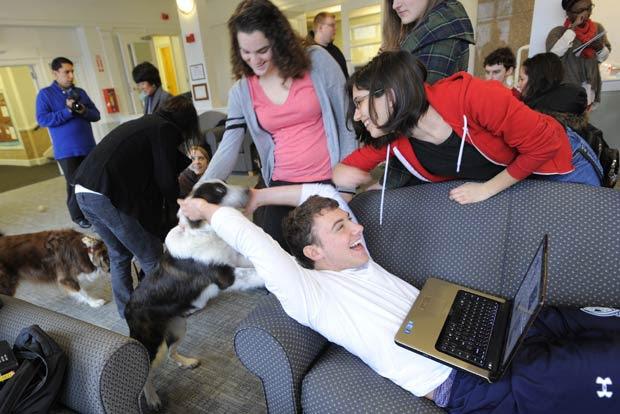 Quatro cães interagiram com os alunos no campus da universidade de Tufts.