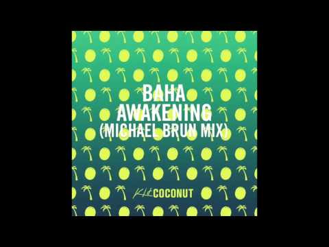 Baha - Awakening (Michael Brun Mix)