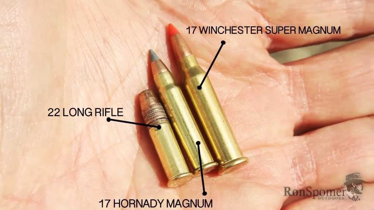 Worlds Most Powerful Rimfire 17 Winchester Super Magnum