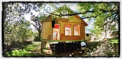 Little Tree House Of The Wood