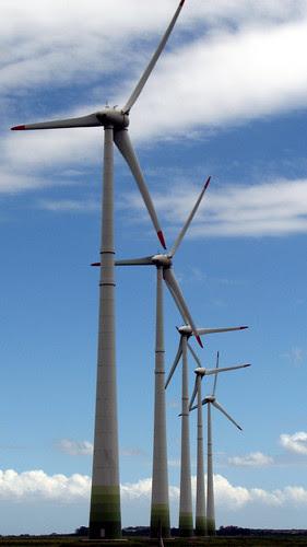 Wind Farm_1