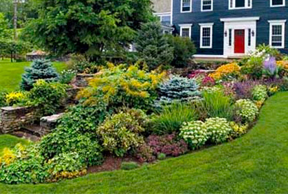 Front Yard Design Ideas No Grass