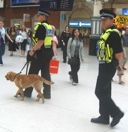 Sniffer dog and police at Victoria Station