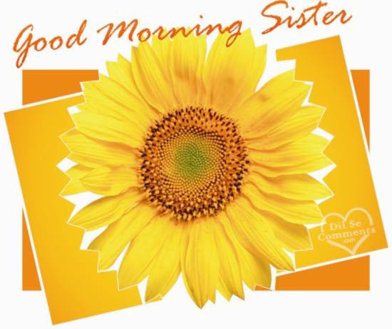 Good Morning Sister Greetings