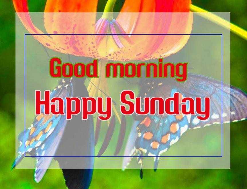 Sunday Good Morning Wishes Images HD
