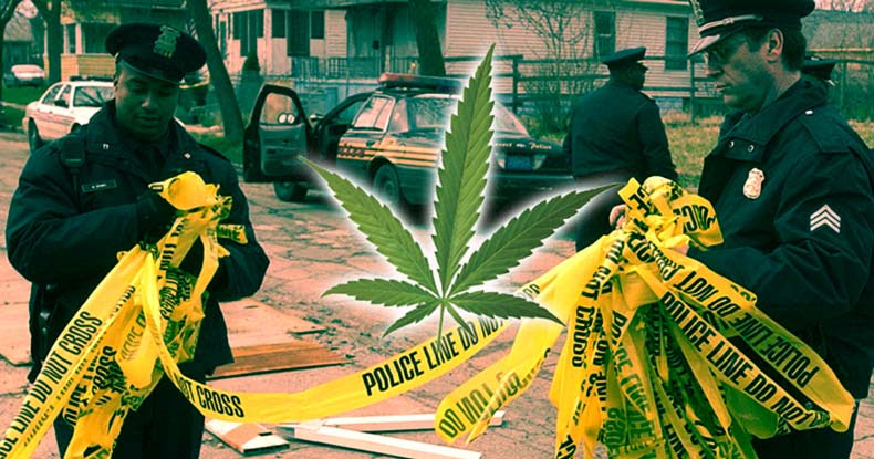 Image result for Imagine That! Police Solve Far More Murders After they Stop Arresting Cannabis Users
