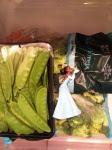 Tiana in the vegetable bin