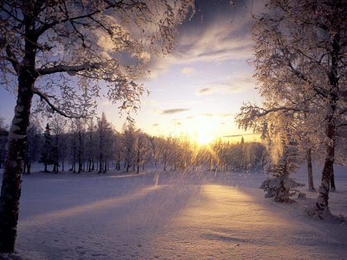 Έξω χιονίζει. Έχεις ακούσει τους ήχους στη φύση όταν χιονίζει? Σιωπή. Μια συντονισμένη σιωπή. Λες και τίποτα δεν αναπνέει πια.Ερημιά.Όλα ντύνονται σιγά σιγά στα λευκά και γίνονται ίδια. Μια μυστική συμφωνία πως τίποτα δεν θέλει πια να διαφέρει, αλλά να αφομοιωθεί από αυτό που κατά 71% καλύπτει όλο τον πλανήτη. Να ηρεμήσει. Να γίνει κάτι από όλα. Να ανήκει επιτέλους κάπου. Κάπου που δεν θα είναι, αλλά θα μοιάζει. Κάπου που δεν θα χρειάζεται να φωνάξει αλλά να υπάρχει. Κάπου που θα κρυώσει απλά για να διατηρηθεί φρέσκο. To χιόνι σκεπάζει τα πάντα και δημιουργεί ένα νέο τοπίο. Αφθαρτο. Αγνό. Αμόλυντο. Το μυαλό παγώνει δεν σκέφτεται πια. Το αίμα δεν φέρνει τίποτα. Η καρδιά δεν θέλει. Όλα στα λευκά. Κι εγώ το ίδιο. Καλώς ήρθες '13.