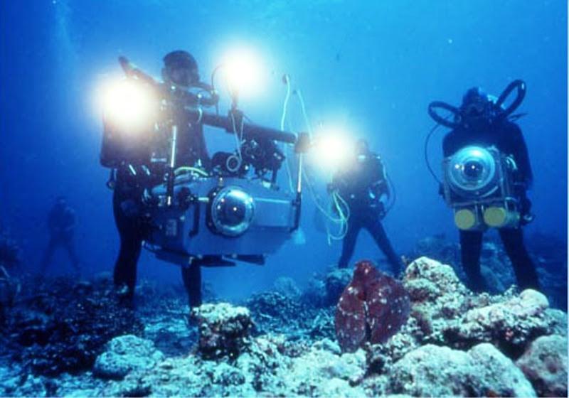 Coral Reef Adventure E