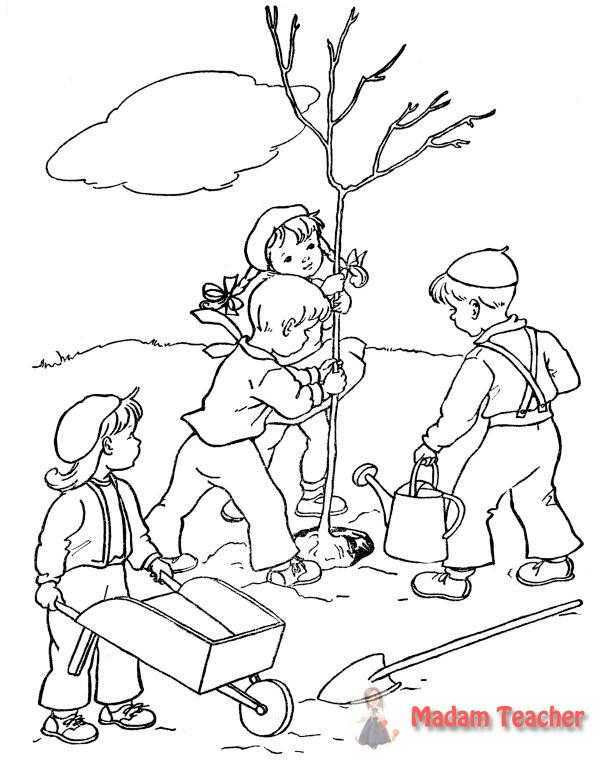 Ağac Dikme Boyama Sayfasi 3 Okul öncesi Etkinlik Faliyetleri