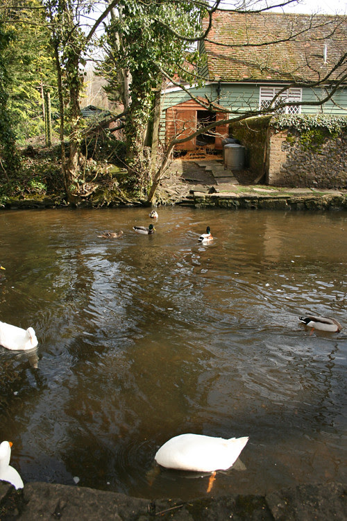 Shere: a lovely village on the picturesque Tillingbourne