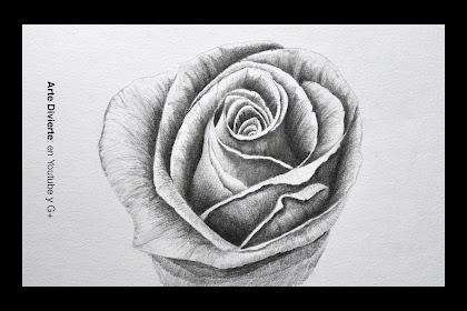 Dibujos De Flores Tumblr Pinterest