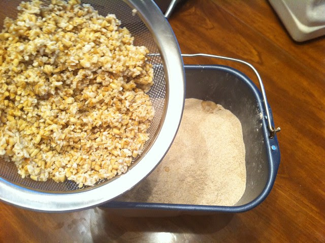 Adding Drained Steel Cut Oats