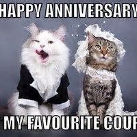 Happy Wedding Anniversary Memes   www.pixshark.com