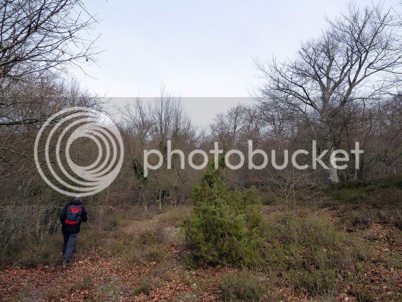 photo P1120402_resize.jpg