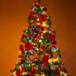 Google News Weihnachtsbaum Neueste