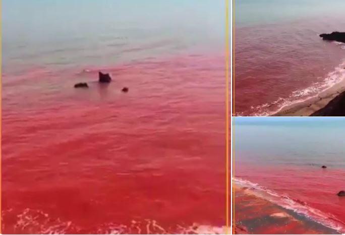 το νερό του στενού Hormuz έχει μετατραπεί σε κόκκινο αίμα στο Ιράν, το νερό του στενού Hormuz έχει μετατραπεί κόκκινο αίμα στο βίντεο του Ιράν, το νερό του στενού Hormuz έχει μετατραπεί κόκκινο αίμα στο Ιράν εικόνα, το νερό του στενού Hormuz έχει μετατραπεί κόκκινο αίμα στο Ιράν μπορεί 2019