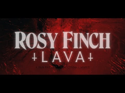 [Videotheque] Rosy Finch - Lava