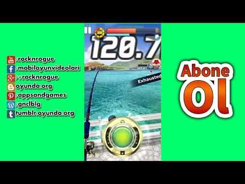 Ace Fishing No: 1 5 Yıldız Balık Akvaryumdan Balık Satışı