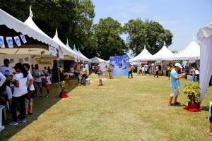 The festival-like event